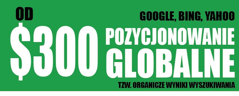 Pozycjonowanie_globalne_www